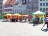 csd-erfurt-2014-infofest-19