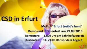 csd-in-erfurt-2015